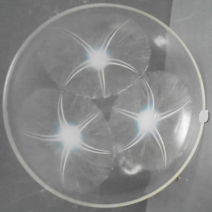 Rene Lalique  Volubilis Shallow Bowl