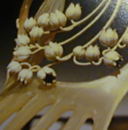 Rene Lalique Hair Comb Muguet Lilly-of-the-Valley