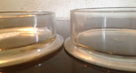 Rene Lalique Gui and Genevieve Box Bottoms: Gui on Right and Taller